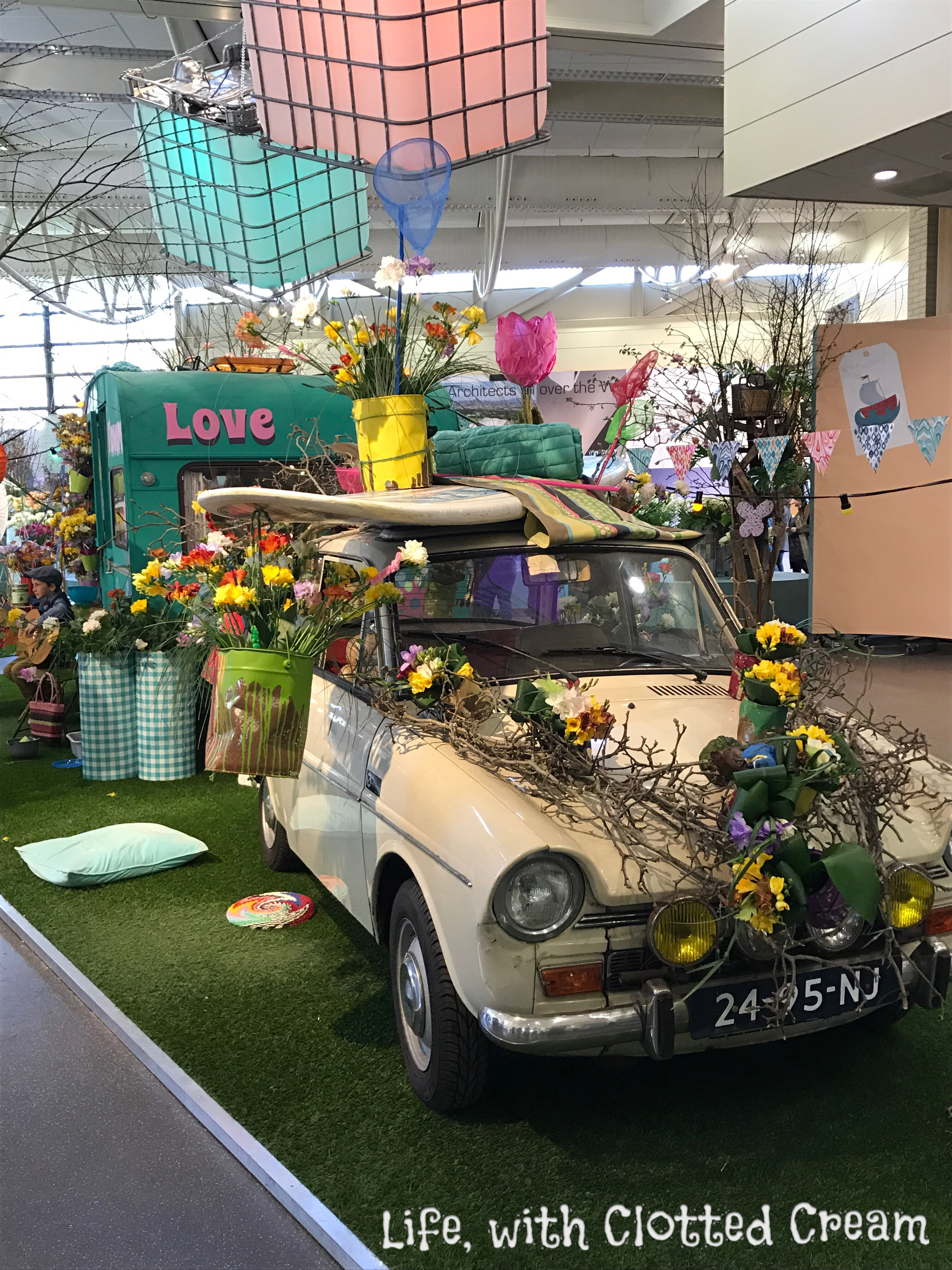 Anglia floral display