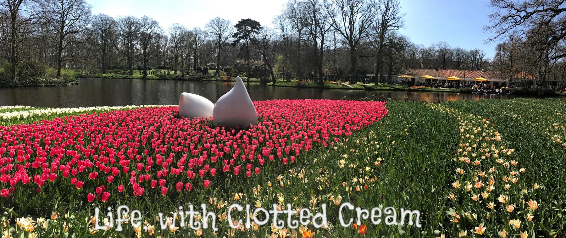 Tulips and daffodils in Keukenhof, Holland