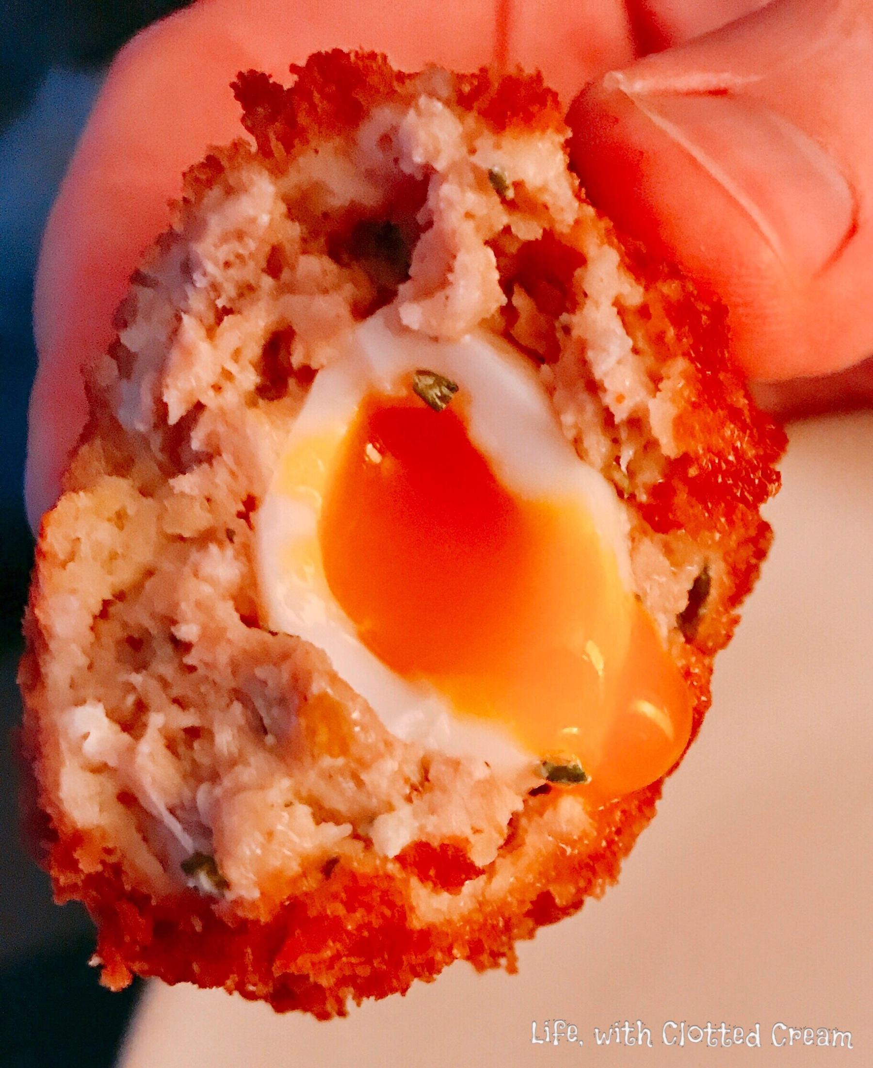 Quail's Scotch Egg