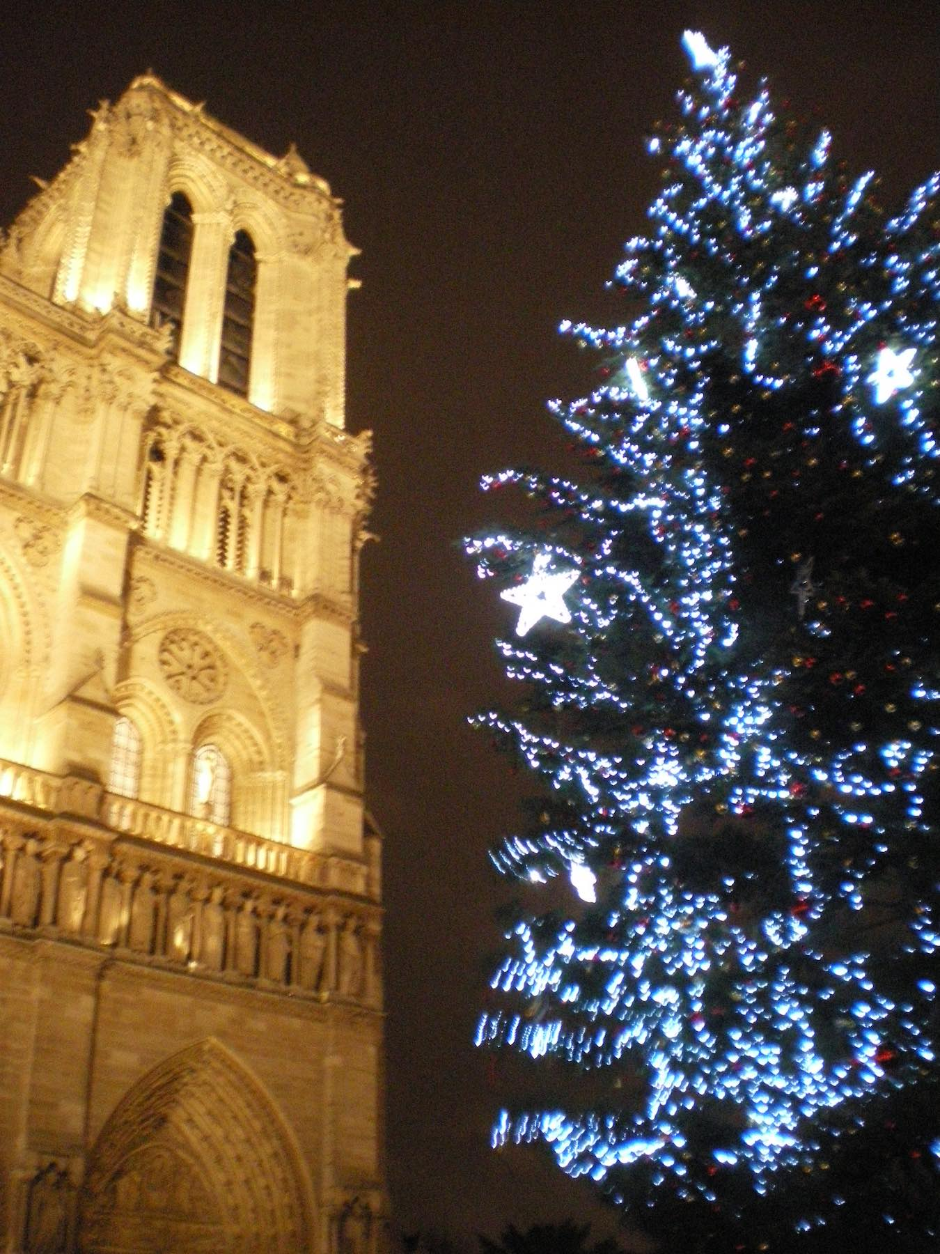 Notre Dame by night with Christmas Tree