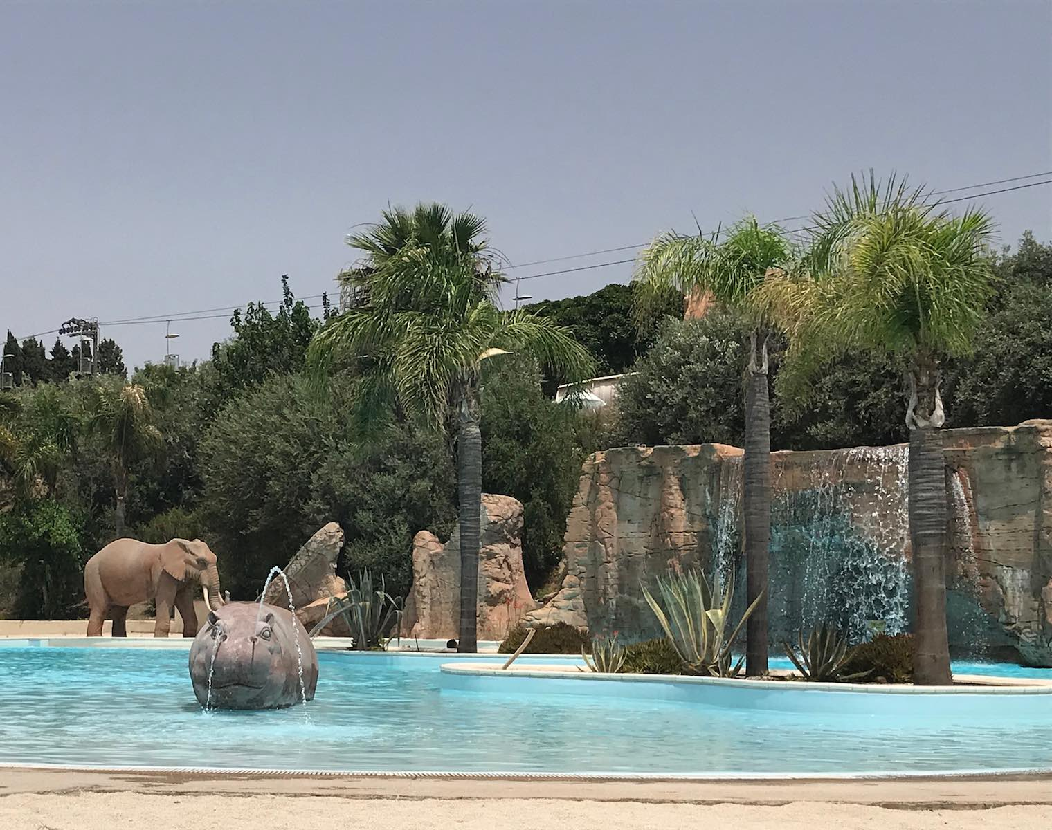 The hippo pool in Etnaland
