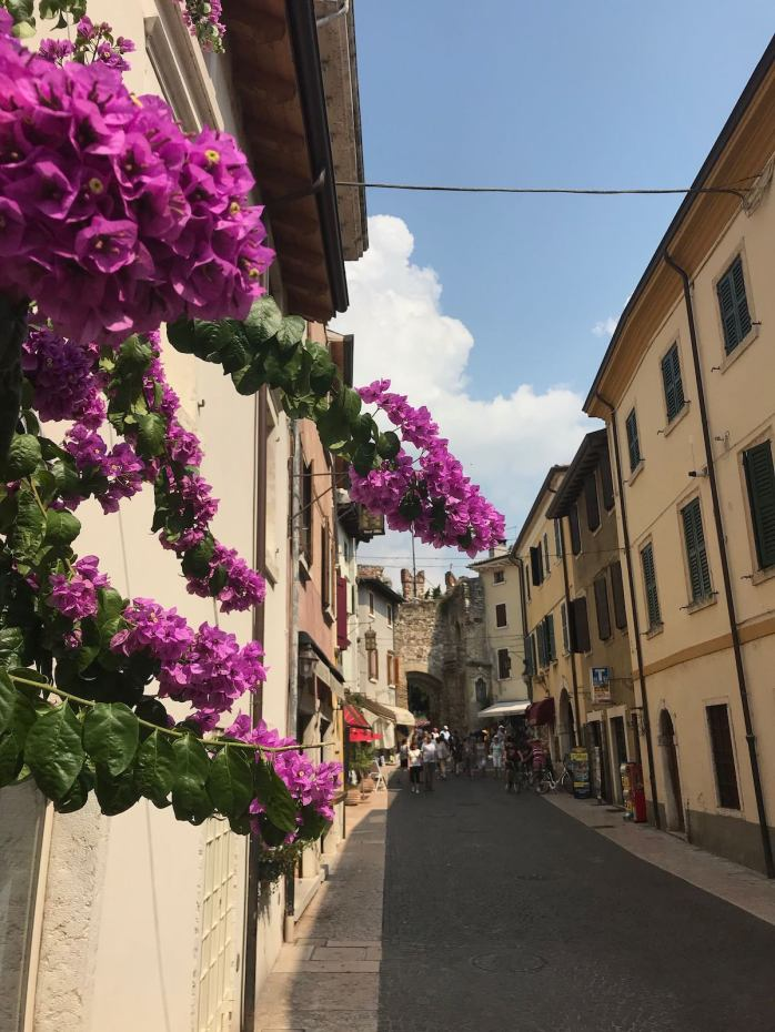 Bougainvilla in Lazise