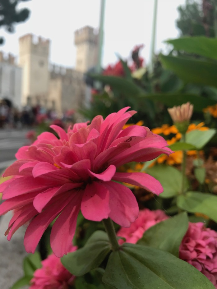 Flowers outside Sirmione Castle
