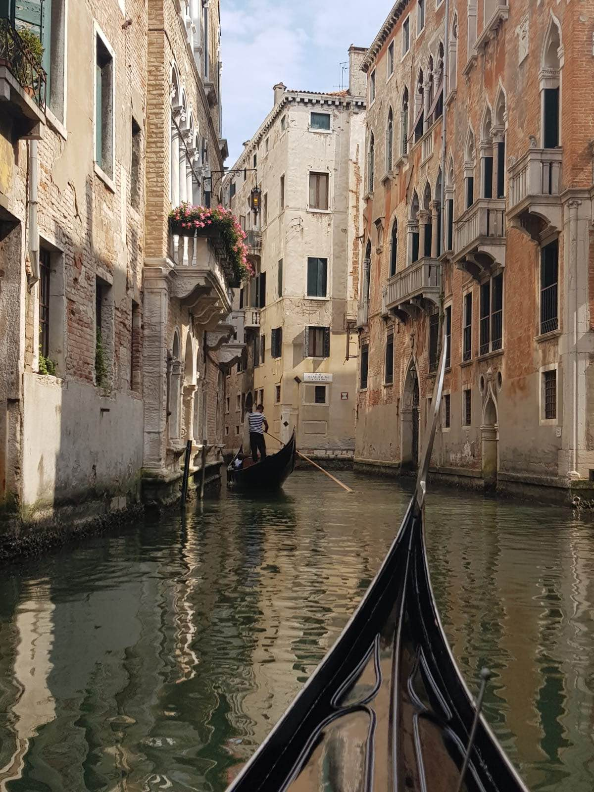 View of Venice from a gondola