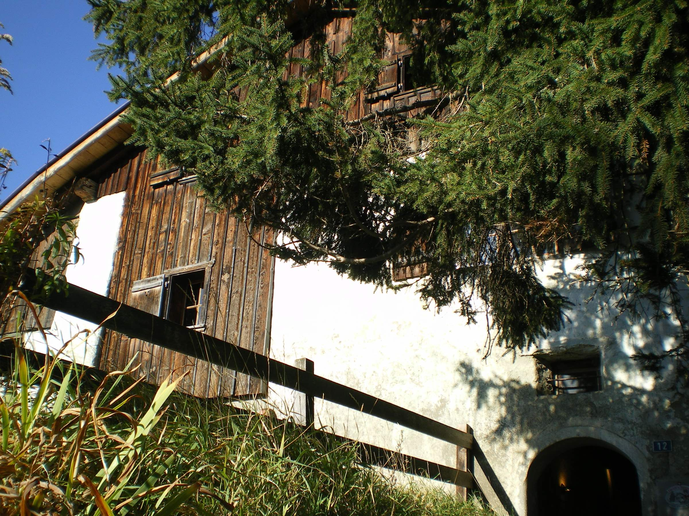 Side view of Heidi's home